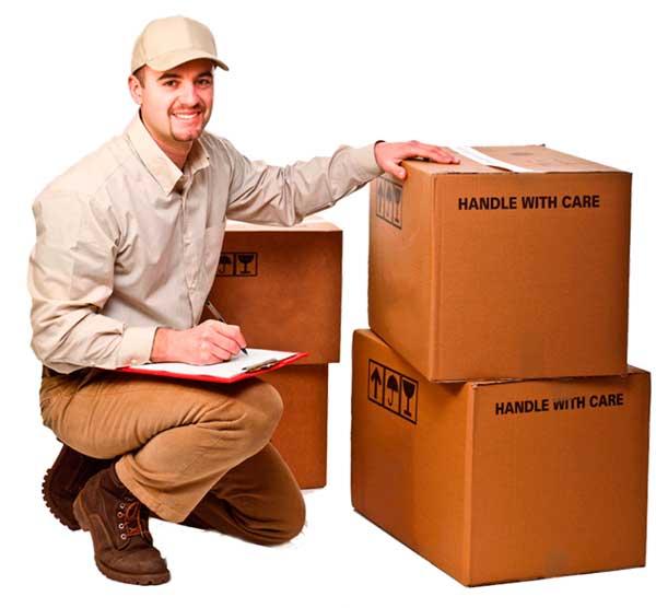 courier servicio