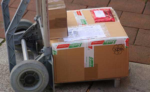 seguridad logística
